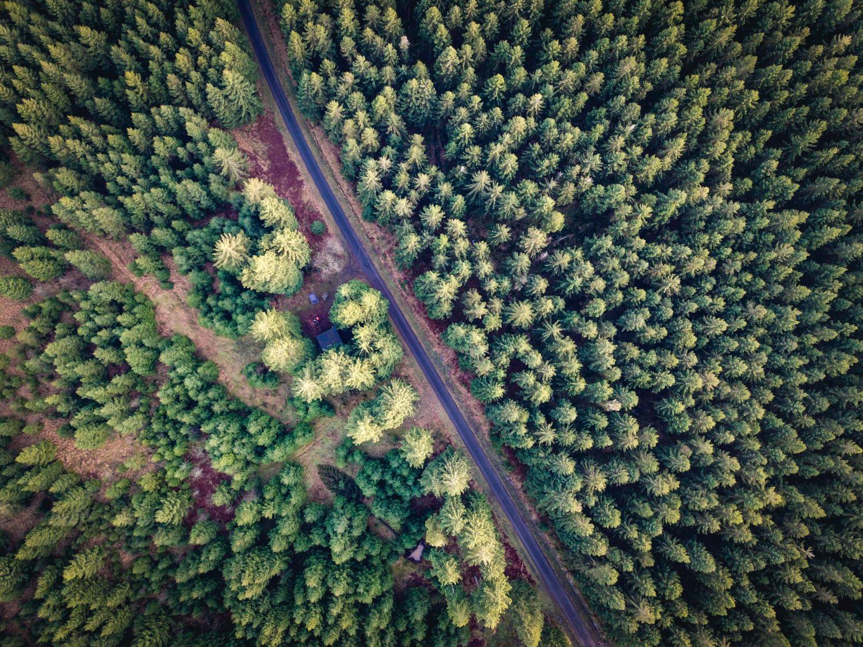 MicroAventure près des Hautes Fagnes (Hertogenwald)